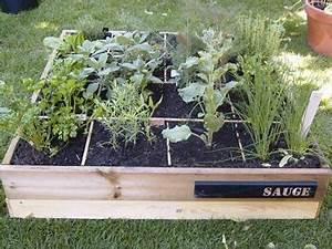 Carré Potager Gamm Vert : sc ne de potager un carr d 39 aromatiques gamm vert ~ Dailycaller-alerts.com Idées de Décoration
