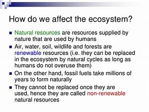 Chapter 22 Ecology Lesson 1