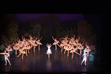img pittsburgh ballet theatre