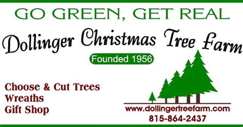 dollinger christmas tree farm shannon il they offer