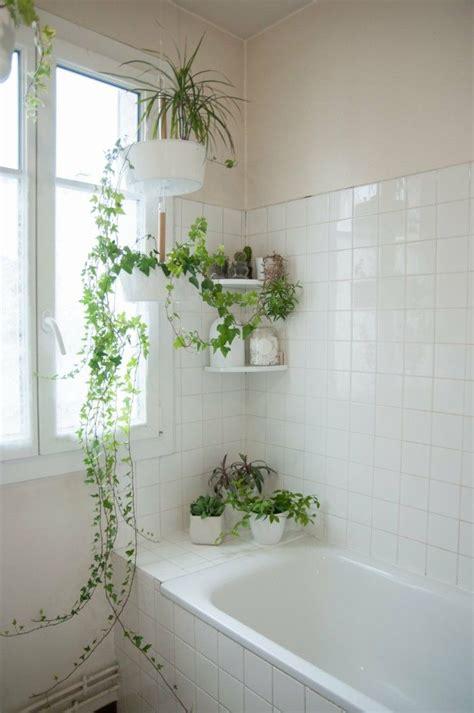 Pflanzen Im Badezimmer by Badezimmer Gestalten Und Dabei Eine Tropenoase Entstehen