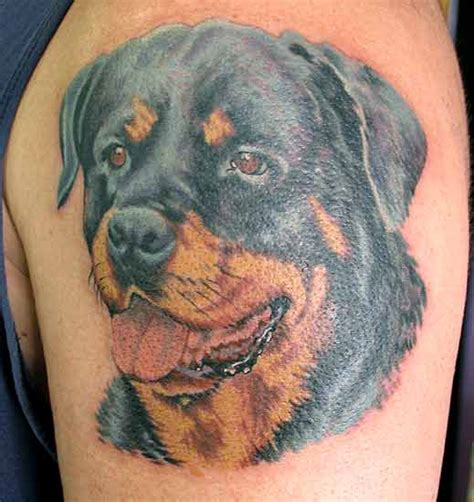 the 14 coolest rottweiler designs in the world the 14 coolest rottweiler designs in the world