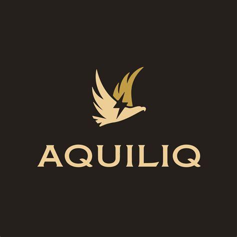 aquiliq apparel brand logo design spellbrand 174