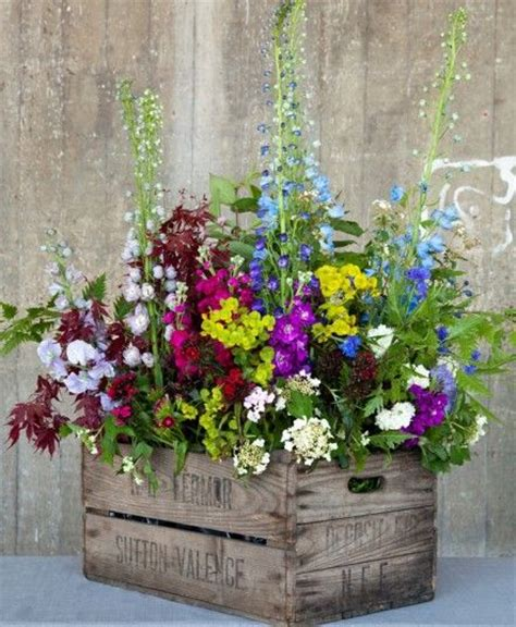 Top Spring Flower Decor Ideas Start Growing Your Own