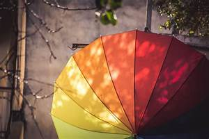 Analogous Colors And Color Wheel  Colours Signify Life