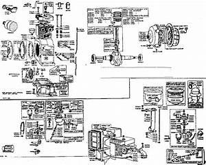 Wiring Diagram Database  Briggs And Stratton Fuel Pump Diagram