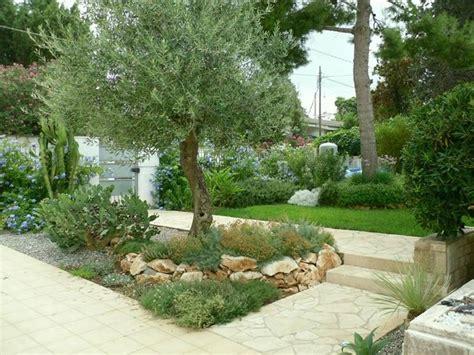 giardini e fiori fiori giardino piante da giardino come scegliere i