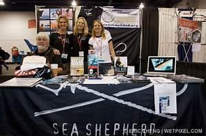 Dema 2008  Sea Shepherd Conservation Society    Wetpixel Com