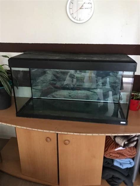 aquarium 100x50x40 kleinanzeigen kaufen verkaufen bei