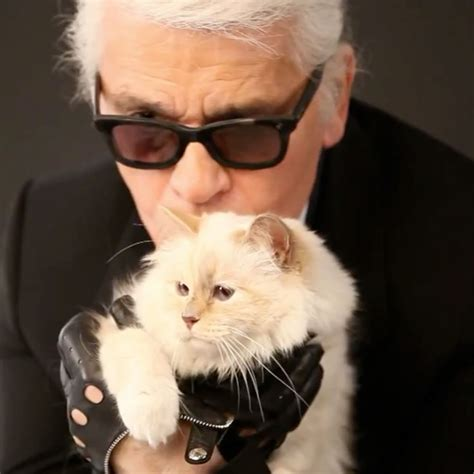 karl lagerfelds cat choupettes makeup  video