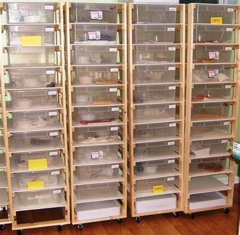 reptile rack system 33 best diy for the reptile hobbyist images on