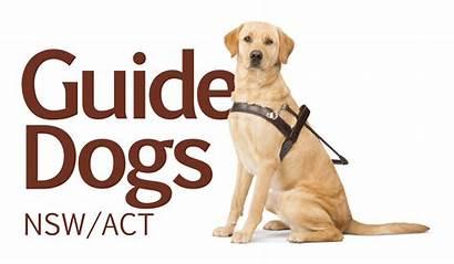 Dogs Guide Nsw Act Australia Australian Bono
