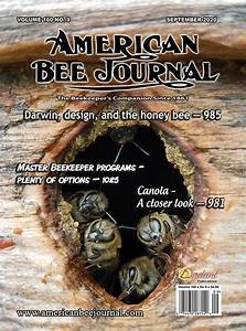 The External Anatomy Of The Honey Bee