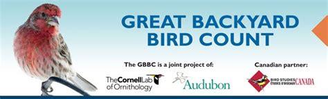 Cornell Great Backyard Bird Count by Audubon South Carolina Great Backyard Bird Count Begins
