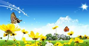 Pictures World: Beautiful flower home HD wallpaper