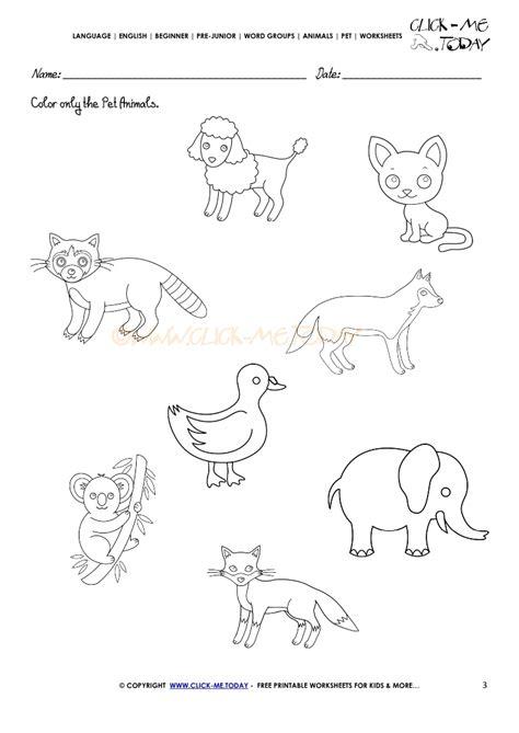 pet animals worksheet activity sheet 3