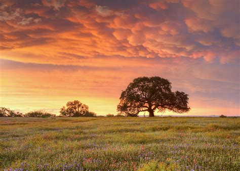 behold  stunning texas hill country