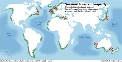 seaweed insideclimate news
