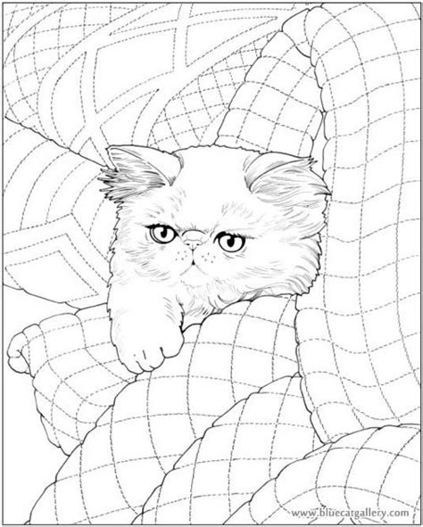 coloring books  cat lovers cleverpedia