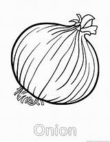 Onion Coloring Vegetable Popular sketch template