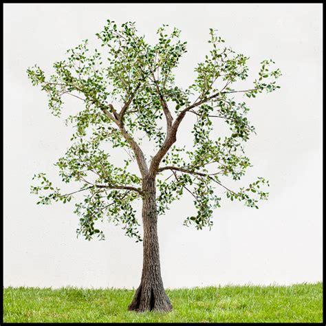 outdoor artificial trees exterior silk trees outdoor