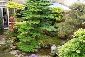 Niwaki - My favourite Japanese-syle garden in the UK