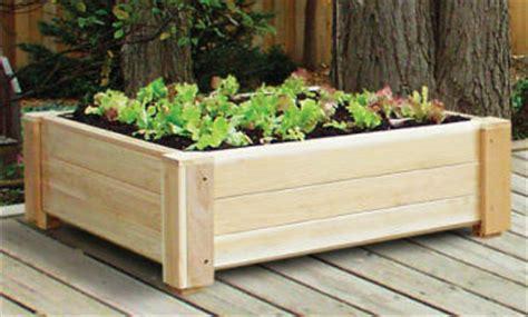 square foot gardening square foot gardening indoor