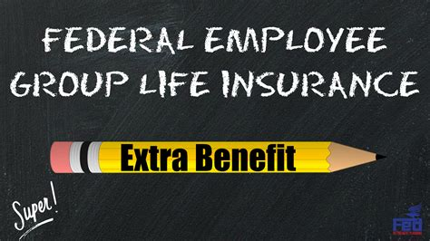 160+ insurers across the us. Federal Employee Group Life Insurance: Extra Benefit | Fed Retirement Planning