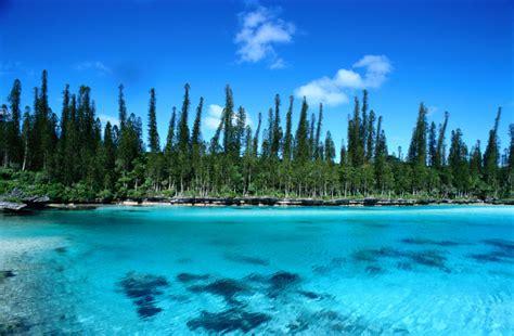 aquarium isle of pines why isle of pines is p o s most popular destination