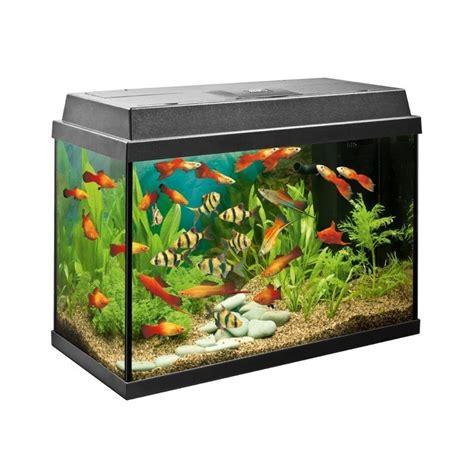 juwel aquarium rekord 600 juwel rekord 600 dimensions crafts