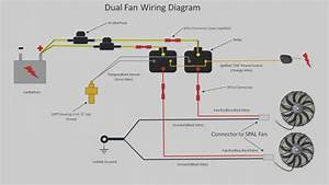17  Hayden Electric Fan Controller Wiring Diagram