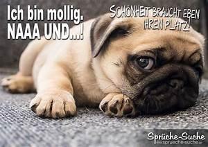 Feierabend Und Wochenende : lustiger spruch mit hund sch nheit braucht platz spr che suche my life as a pug mom ~ Orissabook.com Haus und Dekorationen