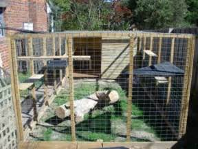 cat outdoor enclosure cat enclosures