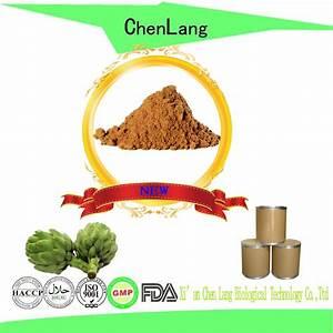 Fine Powder Dried Artichoke Leaf Extract