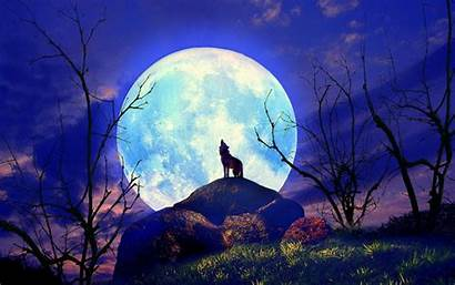 Wolf Neon Wallpapers Moon Nature Mobile Yelp