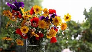 Blumen Im Sommer : download hintergrund vase blumen sommer strau freie desktop tapeten in der auflosung ~ Whattoseeinmadrid.com Haus und Dekorationen