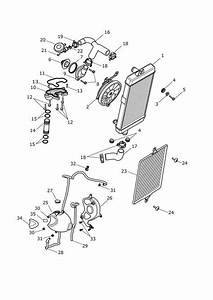 2017 Triumph Thruxton Hose  Coolant  Rad To Engine