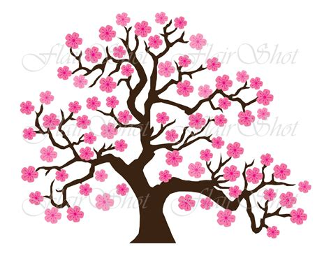 Leaf Clipart Cherry Blossom Pencil And In Color Leaf