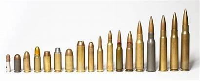 Ammunition Ammo Cartridges Caliber Comparison War Violent