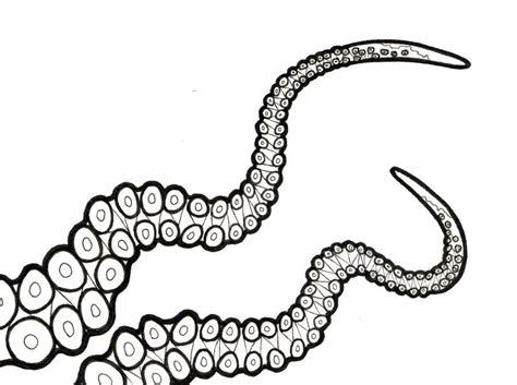 tentacles halloween  sketch tentacle sketches