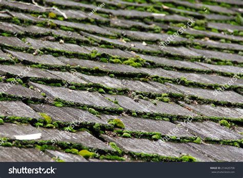 Wooden Shingles Moss On Top Stock Photo 214420708 Floating Roof Tank Roofing Contractors Virginia Leak Insurance Addition Ideas Lakeland Fl What Materials Do I Need To Replace My Vents Types Home Depot Installation Reviews