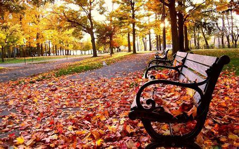 fall wallpapers hd pixelstalknet