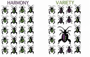 Harmony and Variety | Composition & the Elements ...