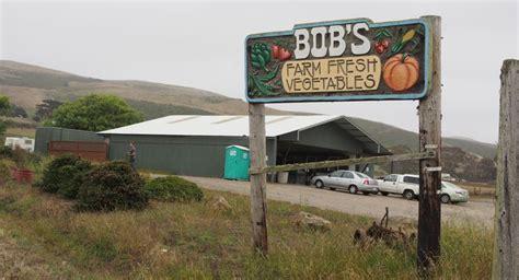 Pumpkin Patch Highway 1 Santa Cruz by Day Trip Highway 1 Slowcoast Winelandia
