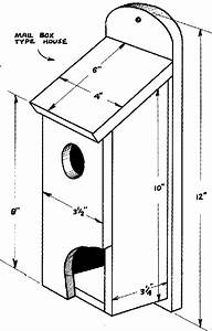 Bird House Plans for Sparrows Lovely House Sparrow Birds