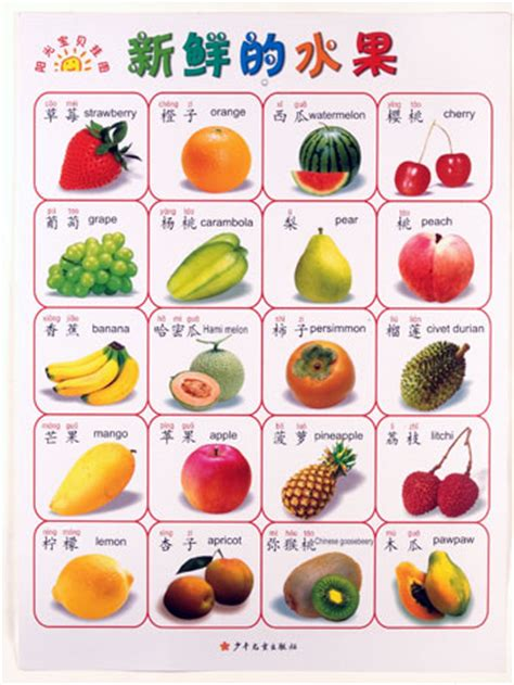 Chinese Vocabulary Basics Posters  Chinese Books  Learn Chinese  Posters  Isbn 9787535843494