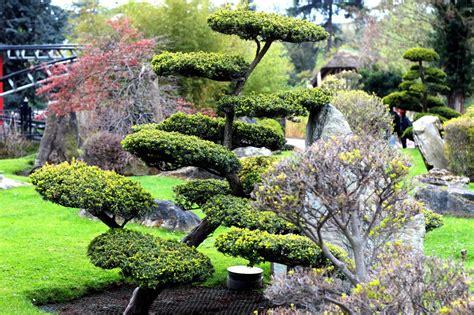 Le Jardin Japonais Au Jardin D'acclimatation De Paris