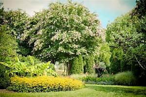 Iconic nashville cheekwood botanical garden camels for Nashville botanical gardens
