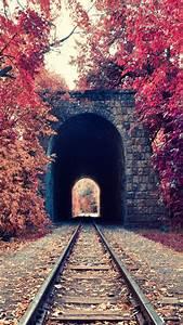 Portrait, Display, Nature, Trees, Fall, Leaves, Railway, Tunnel, Red, Bricks, Armenia, Wallpapers