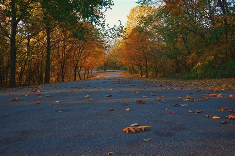 visit missouri articles  fabulous fall drives  missouri